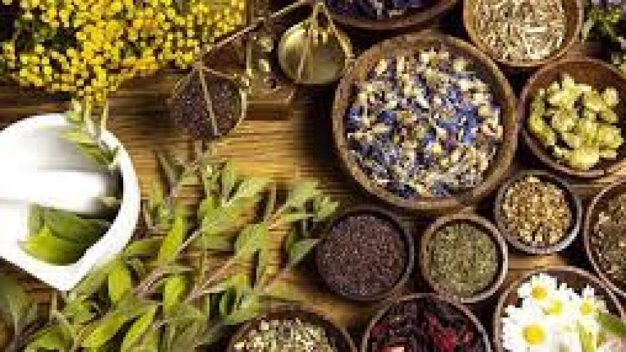 Herbalist healer