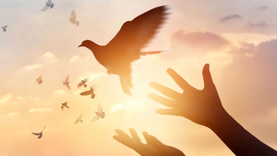Spells For Forgiveness and Reconciliation